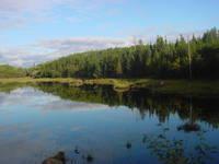 Grassy Narrows land, Ontario
