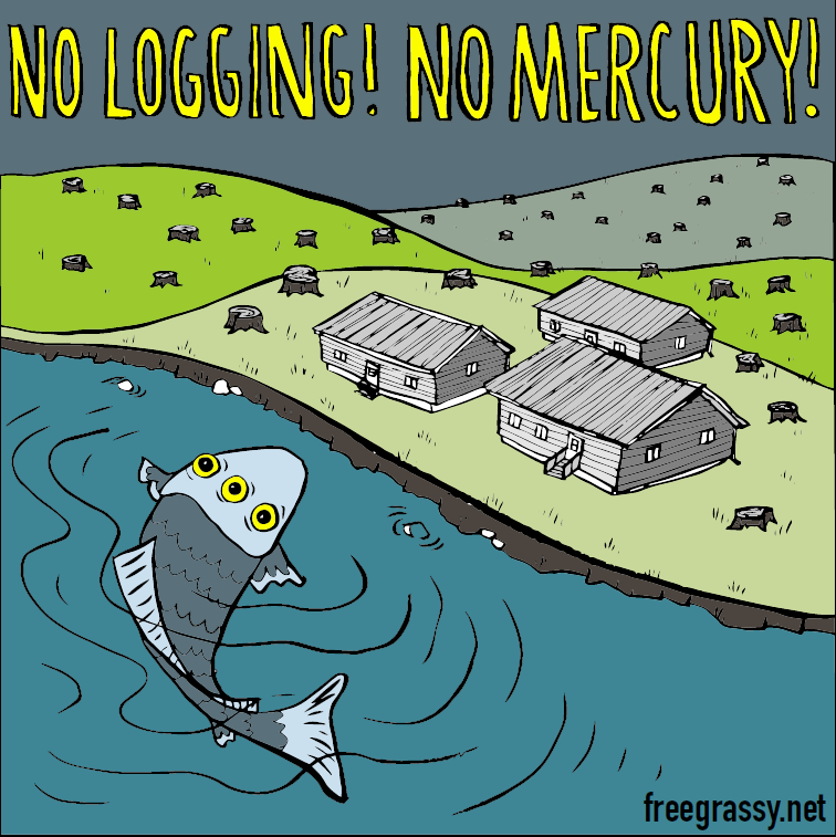Free grassy no logging no mercury noise demo at for Mercury poisoning fish